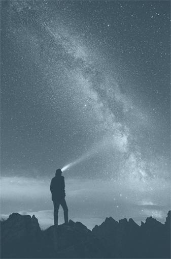 Evexia Stars